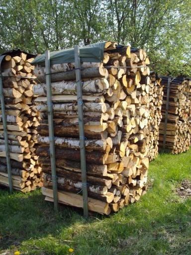 Brennholz/Kaminholz Birke,Erle oder Buche